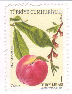 Turkish-stamp