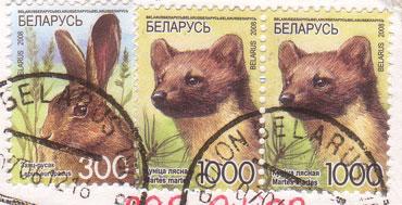 Belarus-animal-stamps