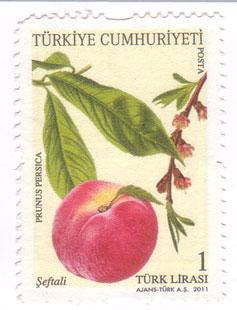 Turkish-stamp