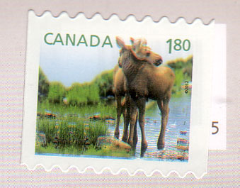 Canada-stamps-baby-animal
