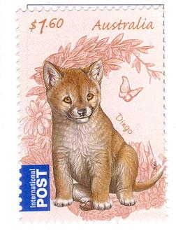 Dingo-stamp