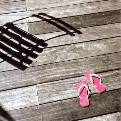 Agathe's Flip Flop by Anne Valverde