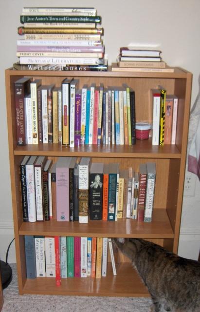 New_bookcase2